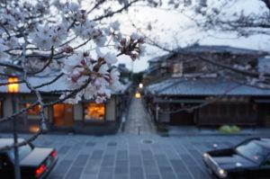3月28日 高台寺ライトアップ